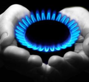 ΦΙΑΛΕΣ ΥΓΡΑΕΡΙΟΥ ΑΜΠΕΛΟΚΗΠΟΙ -  ENERGON GAS (7)